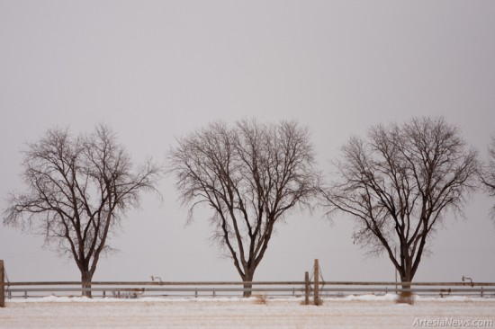 Trees are silhouetted against the gray sky.