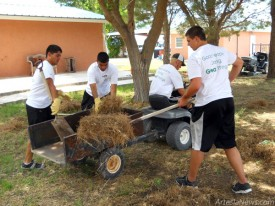 From left, Joseph Lopez, Mathew Navarette, Micah Hammond and Josh Houghtling remove debris from a yard.