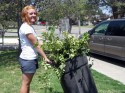 Brianna Phipps hauls a load of clippings to the trash.