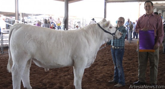 Jordyn Woodburn of Chaparral 4-H receives the Grand Champion Market Steer award for her solid-white steer, Houdini, from judge Joe Rathman Thursday at the Eddy County Fairgrounds. Elizabeth Lewis – Daily Press