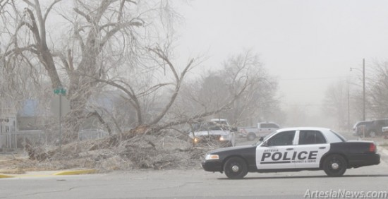 High winds today with gusts reported up to 65 mph uprooted trees and knocked over traffic signs throughout town. This tree at Seventh Street and Dallas Avenue blocked a portion of the roadway and caused a detour until street crews could remove the debris.  Staci Guy – Daily Press
