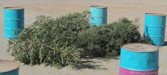 Artesia Clean & Beautiful is conducting its annual recycling of Christmas trees. Trees may be dropped off in the vacant lot west of the Blue Quail Shopping Center through Jan. 11, 2013. The trees will then be mulched, and the mulch will be distributed free to the public. For more information, call AC&B at 748-3192. Rob Larson - Daily Press