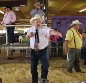 As prices start to soar at the Eddy County Livestock Auction, Joel Bell, Wayne Connell,  Mike Avery, and Mike Hanagan search the crowd for the highest bidder. Liana Swarengin-The Artesia Daily Press