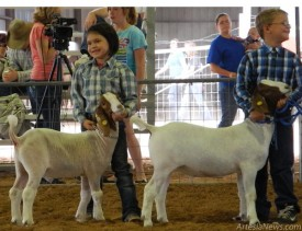 All the kids who participate in Booster Goats are winners on Wednesday night at the Eddy County Fairgrounds.   Liana Swarengin-The Artesia Daily Press