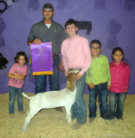 Above, brothers Ty, left, and Chance Mitchell of the Artesia FFA display their Grand Champion and Reserve Champion market lambs Wednesday morning alongside judge Jimmy Davis, far left, of Walters, Okla., and parents Stacy and Miles Mitchell at the Eddy County Fair. At left, Kaylin Klein of Cottonwood 4-H, shows his Grand Champion meat goat Wednesday evening with Davis and assistants, from left, Klanclie Conklin, Braden Fuentes and Brooklyn Fuentes. Klein also took Reserve Champion in the event. Photo above by DeShea Hanagan - For the Daily Press, Photo at left by Brienne Green - Daily Press