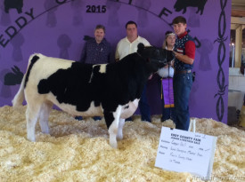 Cooper Hall of the Artesia FFA stands with his Grand Champion market steer following its sale Saturday morning in the Eddy County Junior Livestock Auction at the Eddy County Fairgrounds. With him are representatives of Fenn's Country Market of Artesia and La Tienda Thriftway of Carlsbad, who purchased the steer, and Fair Queen Emma Voldahl. Courtesy Photo