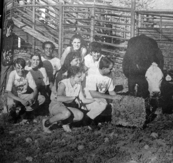 Artesia High School band students visit with a cow at the Four Dinkus Ranch south of Artesia. The band members are selling tickets for the annual Bossie Bingo fundraiser, with the winner getting a trip to Maui, Hawaii. Band students are, front from left, Rick Swafford, Julie Carroll, Chris Combs, second row from left, Candace Smith, Amy Owen, Amanda Johnson, and back from left, Lesa Mallett, Pablo Brizeno and Charla Oaks. (1995 Daily Press File Photo)