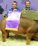 Jacob Colwell, left, and Tylar Colwell display Jacob's Grand Champion swine during last year's Eddy County Fair. (Teresa Lemon - Daily Press File Photo)