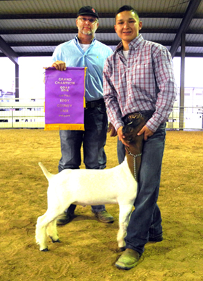 Devon Torres-Trujillo of the Artesia FFA displays his Grand Champion meat goat alongside judge Jimmy Davis of Walter, Okla., Wednesday evening at the Eddy County Fair. A total of nine classes of goats were presented for Davis' inspection. (Teresa Lemon - Daily Press)