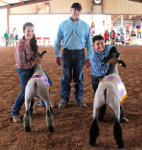 Gracelyn Casey, left, of the Artesia FFA and Braden Fuentes, right, of Cottonwood 4-H show off their Grand Champion and Reserve Champion market lambs respectively Wednesday afternoon at the Eddy County Fair as judge Jimmy Davis of Walter, Okla., looks on. (Elizabeth Lewis - Daily Press)