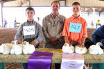 Jake Craft, left, of Zackary Pinson, right, both of Cottonwood 4-H, display their Grand and Reserve Champion broiler poultry respectively alongside judge Steven Beaty of Portales during the final day of livestock shows Thursday at the Eddy County Fair. (Elizabeth Lewis - Daily Press)