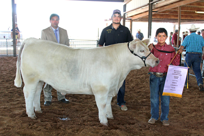 Tye Martinez, right, of Brushpoppers 4-H displays his Reserve Champion market steer and banner Thursday at the Eddy County Fair alongside judge Shane Meier of Stonewall, Texas, left, and the steer's owner, Trey Yates. (Elizabeth Lewis - Daily Press)
